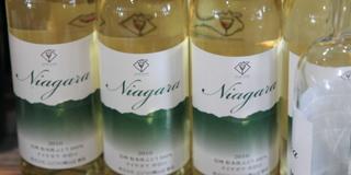 山辺ワイン ナイアガラ