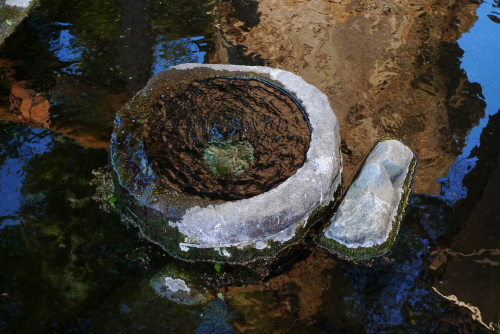 槻井の湧水
